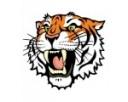 Widnes Tigers